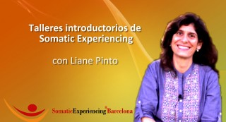 Somatic Experiencing Talleres introductorios 2018